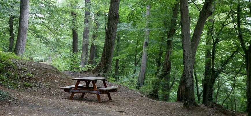 Koronavirüs: Park ve mesire alanlarında piknik yapmak yasaklandı