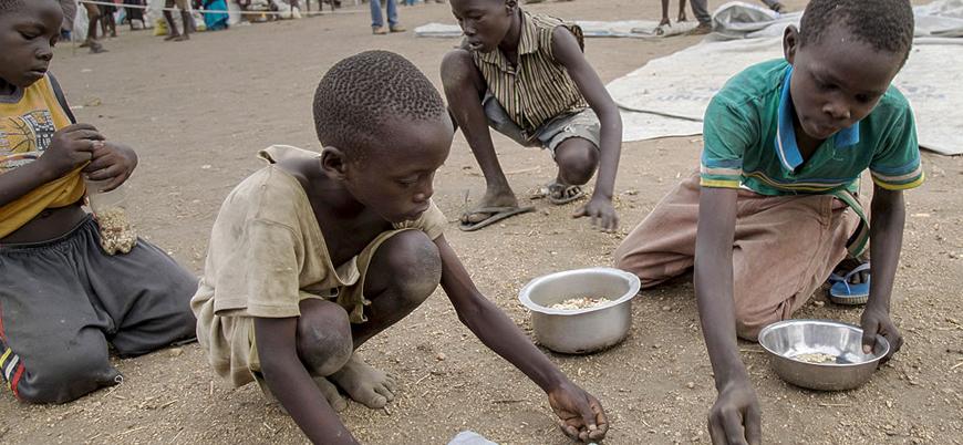 Afrika'da çekirge istilası nedeniyle açlık krizi kapıda