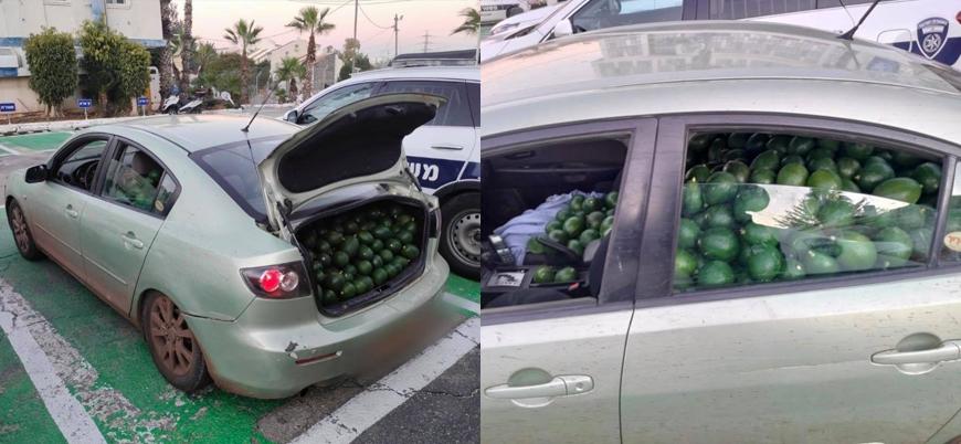 İsrail'de Yahudi hırsız 680 kilo avokadoyla yakalandı