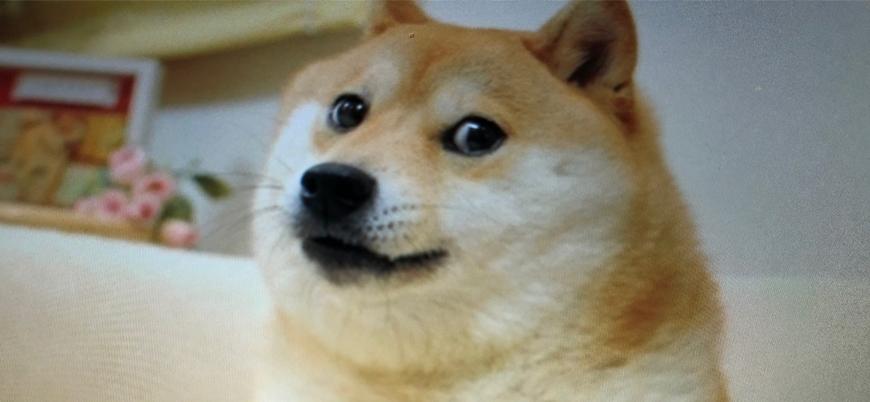 Dogecoin: Bir şakayla ortaya çıkan ve piyasa değeri 17 milyar doları aşan kripto para