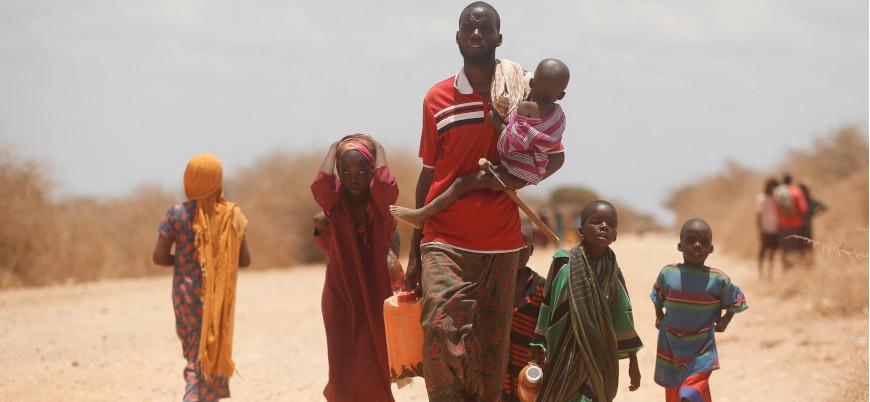 Somali'de kültürel yapı