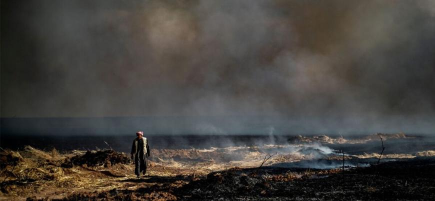 Esed rejimi İdlib kırsalında buğday tarlalarını ateşe veriyor
