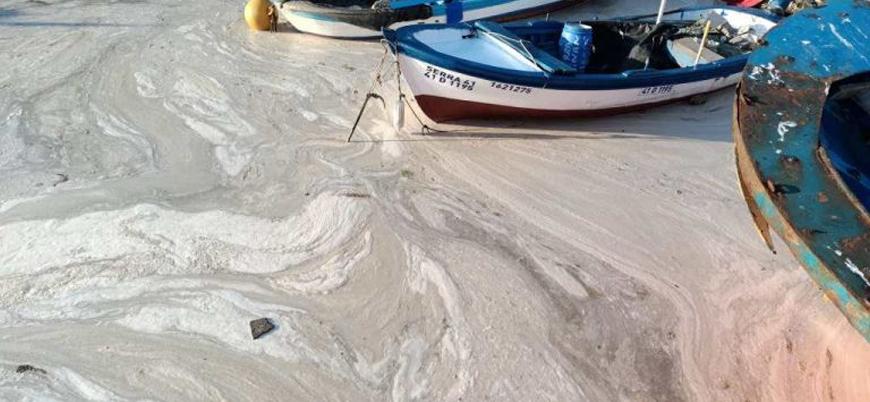 Bakanlık 'deniz salyası' için acil eylem planı hazırlanıyor