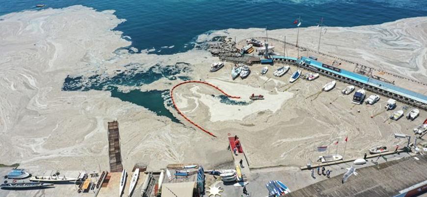 Marmara'daki müsilaj sorunu için eylem planı