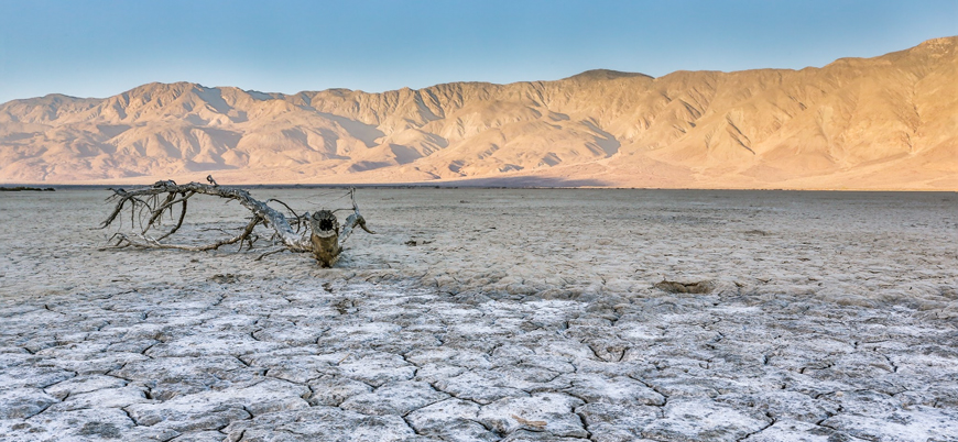 ABD'nin yüzde 38'i kuraklık etkisi altında