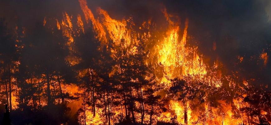 Türkiye'de 9 yangın halen devam ediyor