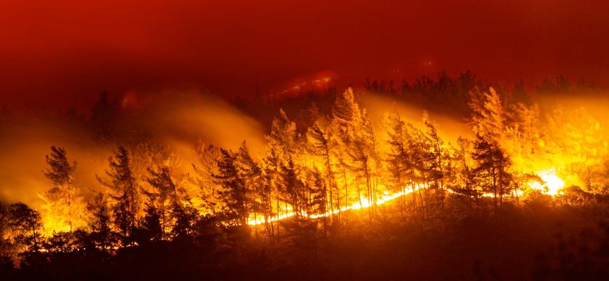 Yunanistan'da orman yangınları önlenemiyor