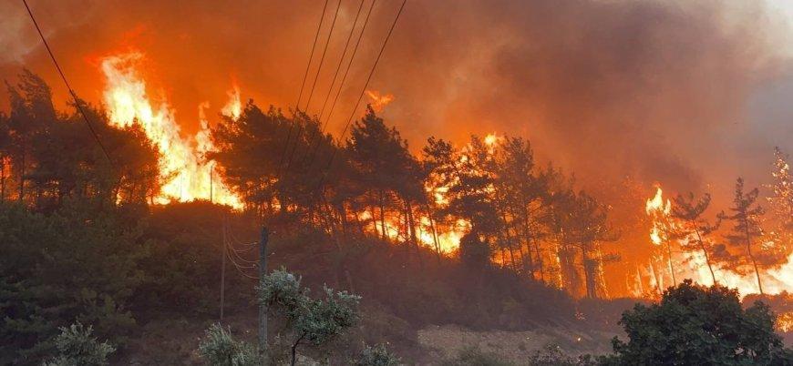 Türkiye'deki son yangınlarda kül olan ormanlar 20 yıllık bilançoya eşit