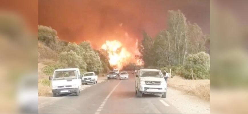 Cezayir'de orman yangınları: 42 ölü