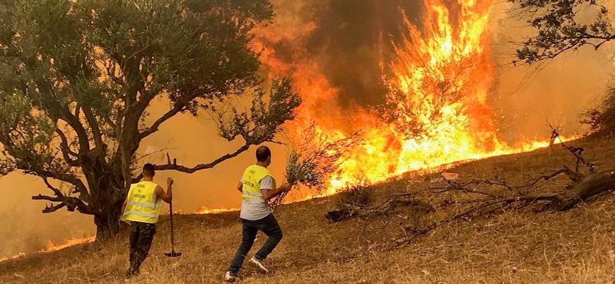 Cezayir'deki yangınlarda ölü sayısı 71'e yükseldi