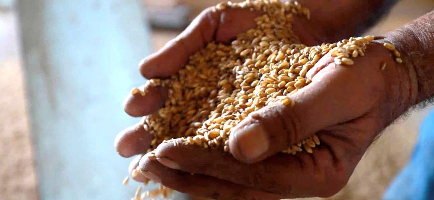 Hindistan'da gelir adaletsizliği ve açlık sorunu büyüyor