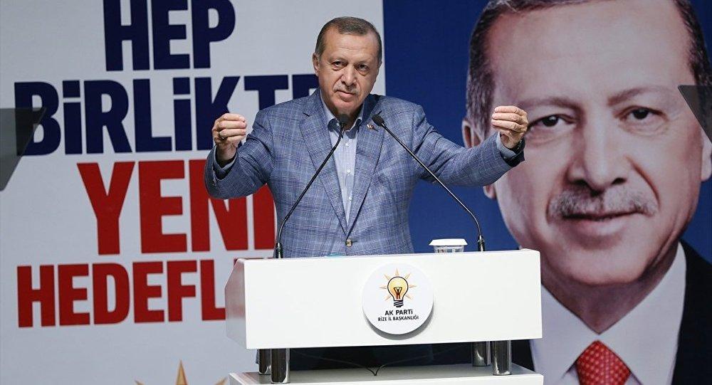 Erdoğan neden kamuoyu önünde teşkilatlarını eleştiriyor?