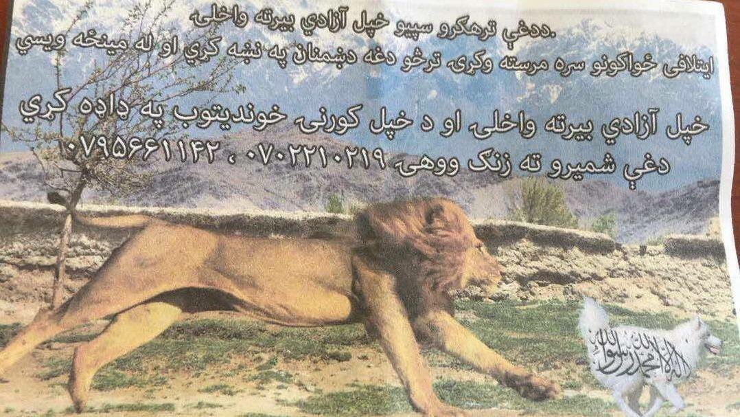 ABD'nin Afganistan'da İslami değerlere saldırı içeren ilanı tepki topladı