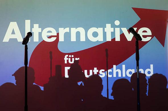 Alman ırkçıları, ana-akım partileri nasıl ezip geçti?
