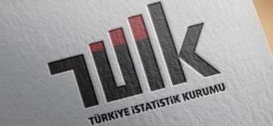 TÜİK: Türkiye ekonomisi 2020'de yüzde 1.8 büyüdü