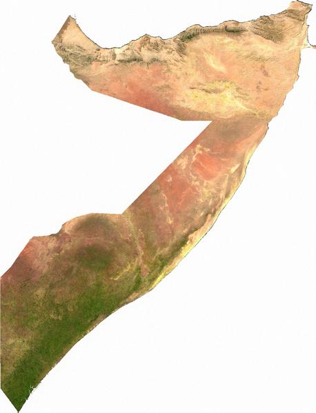 somali-bitki-ortusu.png