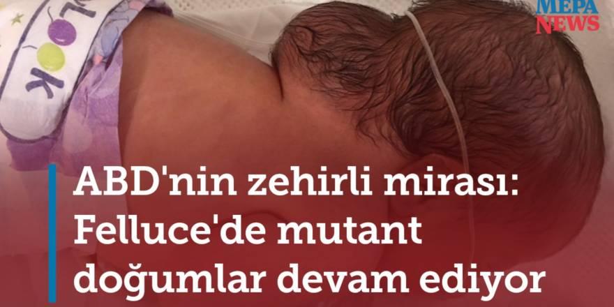 ABD'nin zehirli mirası: Felluce'de mutant doğumlar devam ediyor