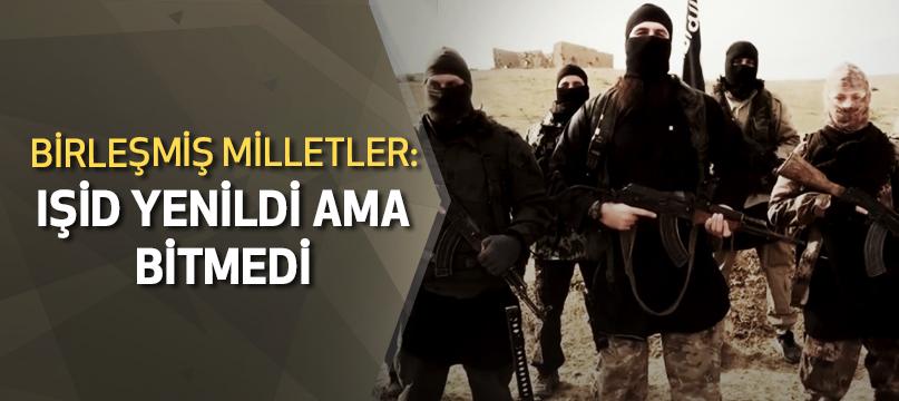 Birleşmiş Milletler: IŞİD yenildi ama bitmedi